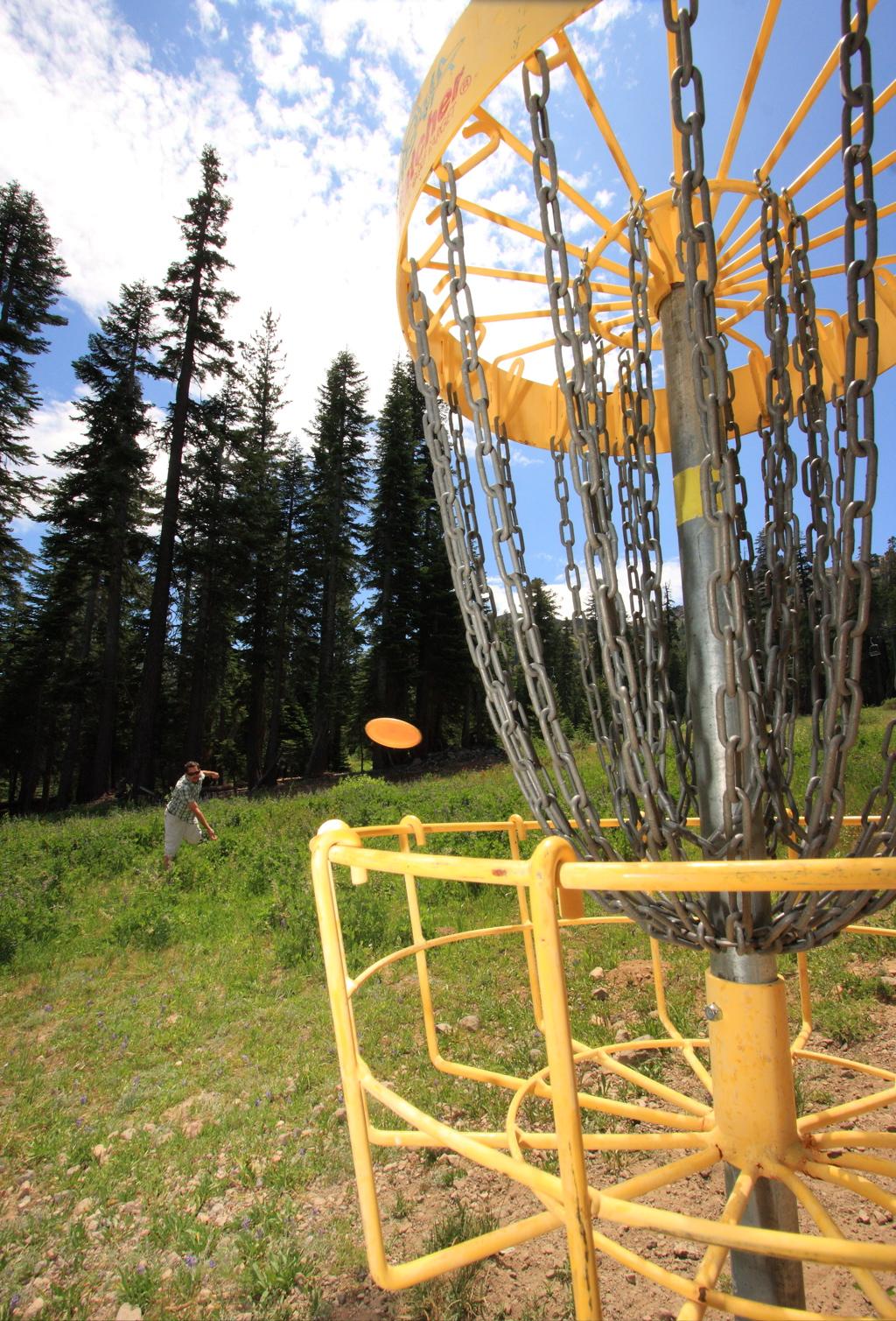 disc-wood-south-lake-tahoe